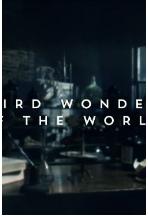 奇异的世界2