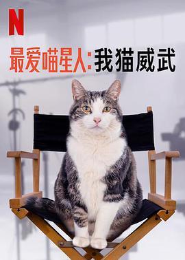 最爱喵星人我猫威武最爱喵星人我猫威武