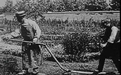 《水浇园丁》电影高清在线观看