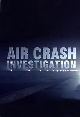 《空中浩劫第十九季》电影高清在线观看