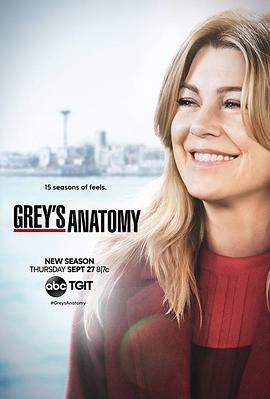 实习医生格蕾第十五季,高清在线播放