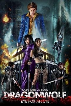 narutohaitei小南视频DVD原版