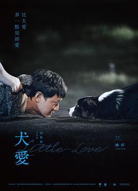 犬爱2019-河南电影免费