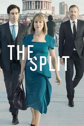 离婚律师 家裂 第二季