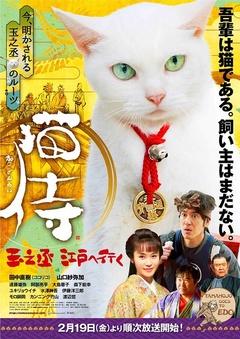 猫侍:玉之丞进军江户