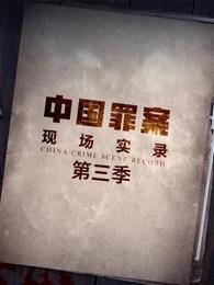 罪案现场实录第三季