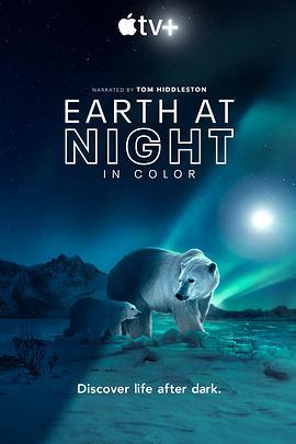 夜色中的地球第二季海报剧照