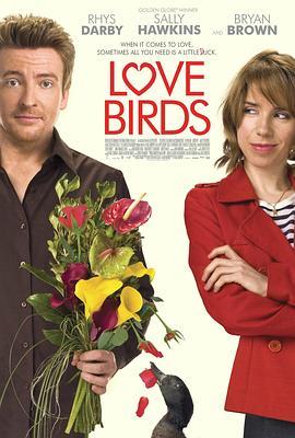 爱情鸟在线播放