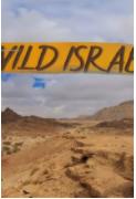 野性以色列