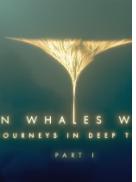 鲸鱼有脚的年代