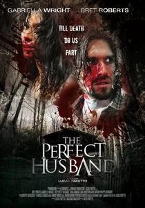 《完美丈夫》  高清在线观看_完整版迅雷下载