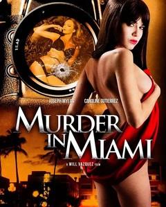 《迈阿密暗杀档案》  高清在线观看_完整版迅雷下载