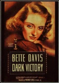 黑暗的胜利