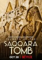 塞加拉陵墓揭秘