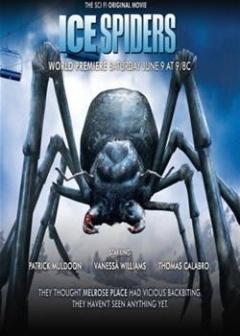 冰冻蜘蛛,高清在线播放