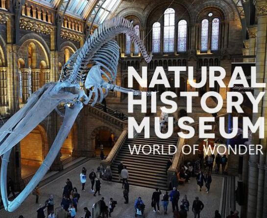 英国自然历史博物馆神奇世界第一季