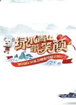 2020安徽卫视春晚(综艺)