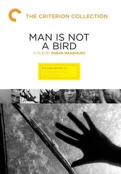 《男人非鸟》电影高清在线观看