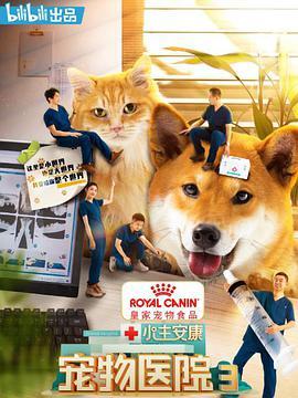 小主安康-宠物医院3