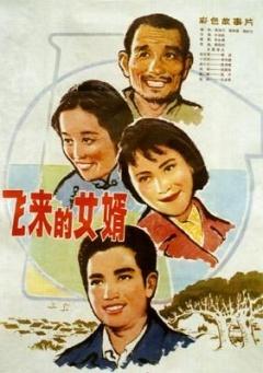 《飞来的女婿》电影高清在线观看