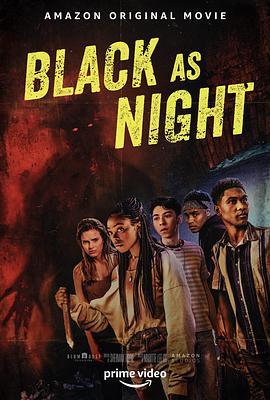 暗黑之夜海报