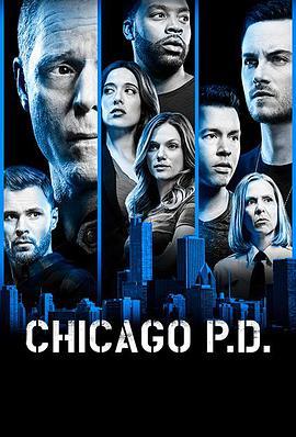 芝加哥警署第六季,高清在线播放